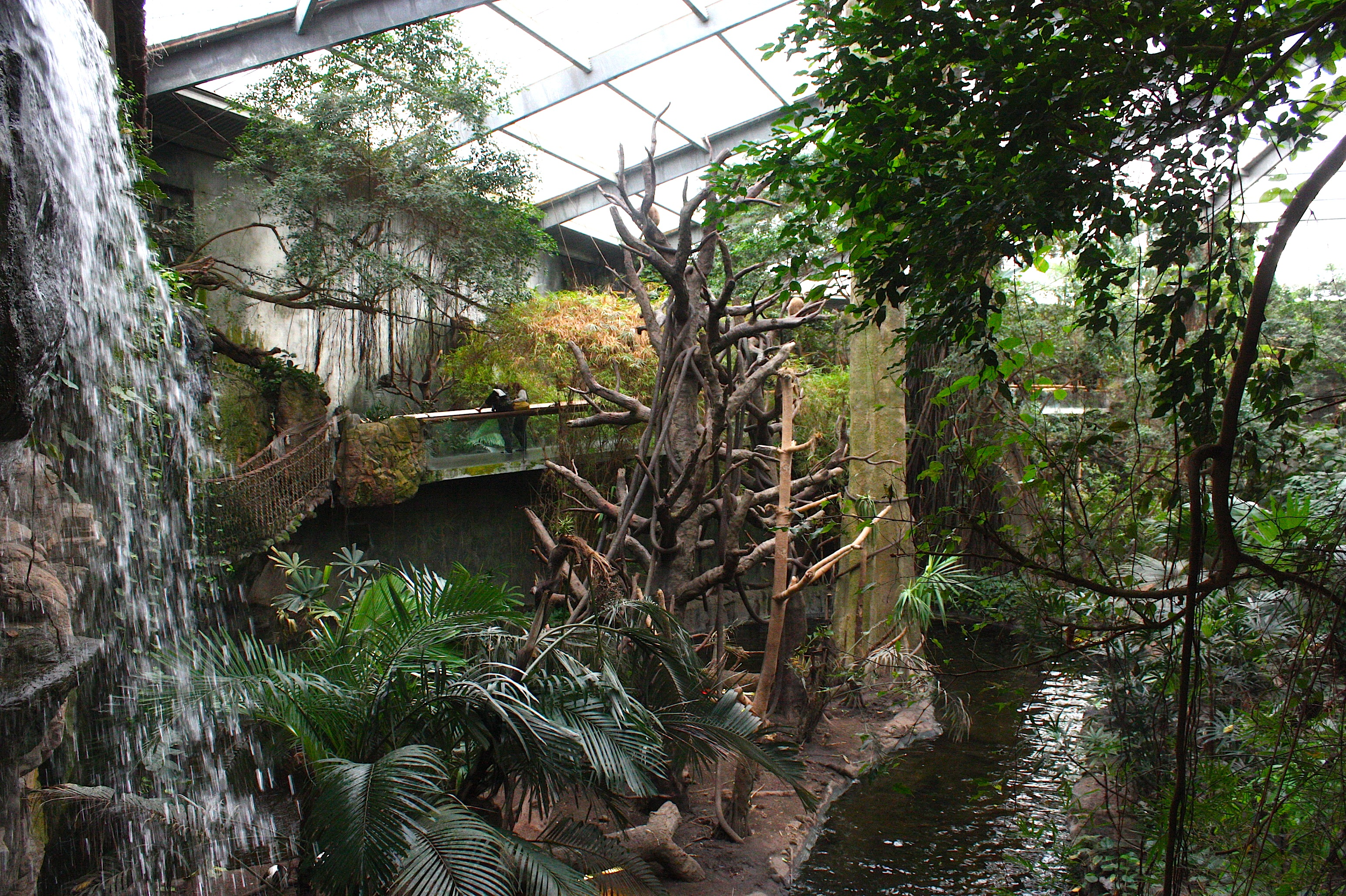 ideas for wedding pictures in the rain - Omaha's Henry Doorly Zoo — in January